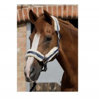 Premier Equine Halfter Techno Wool Lined Head Collar