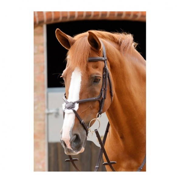 Premier Equine Snaffle with Mexican Caveson Glorioso Grackle Bridle