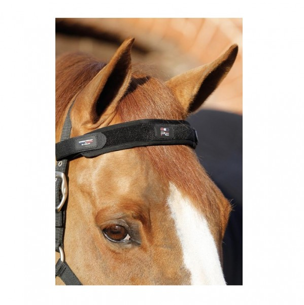 Premier Equine Therapy Headband Magni-Teque Magnetic Browband