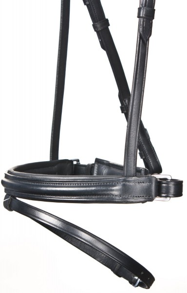 bb snaffle with swedish-combined noseband