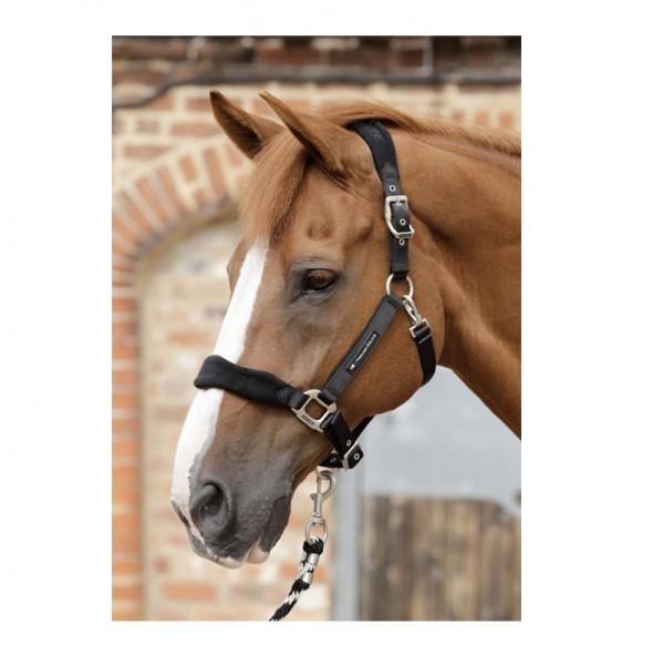 Premier Equine Halfter Fleece Padded Horse Head Collar