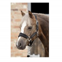 Premier Equine Pony-Halfter Padded Fleece Horse Head Collar