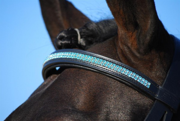bb browband with blue rhinestones
