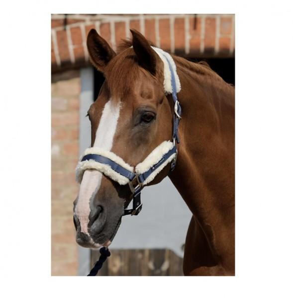 Premier Equine Halter Techno Wool Lined Head Collar