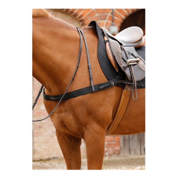 Premier Equine Elastisches Vorderzeug Zimella Elastic Breastgirth