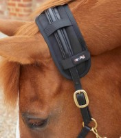 Premier Equine Therapie-Genickschoner Magni-Teque Magnetic Poll Band