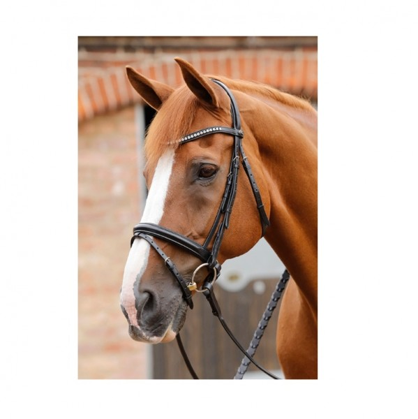 Premier Equine Snaffle with English-Combined Noseband Bellissima Crank Bridle