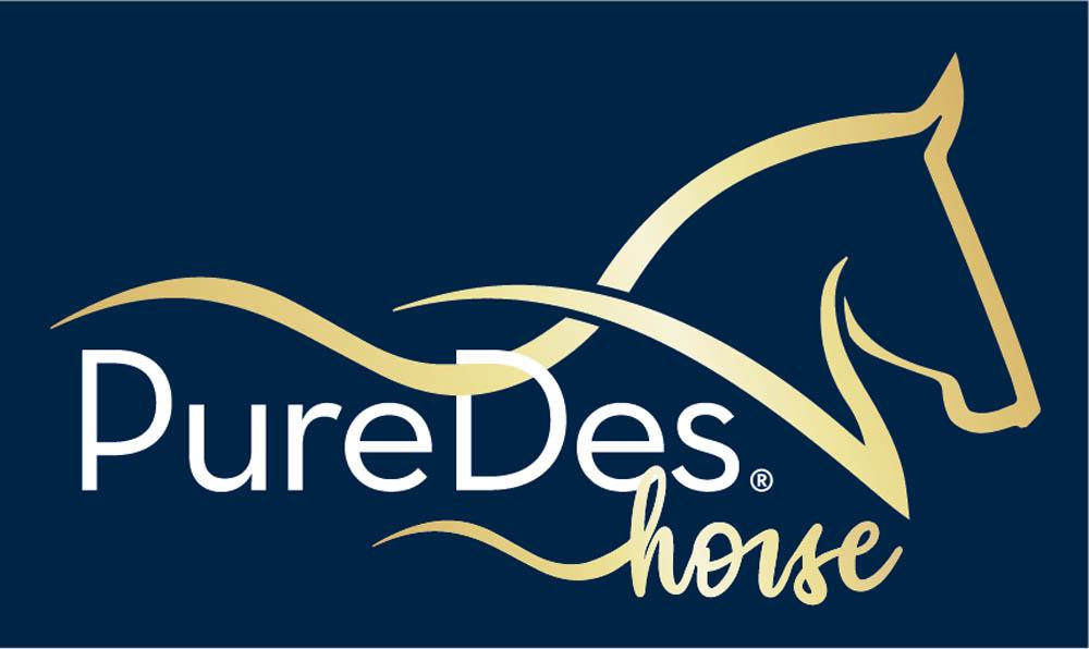 PureDes Horse