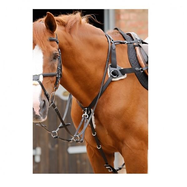 Premier Equine 5-Punkt Vorderzeug Invorio 5 Point Breastplate