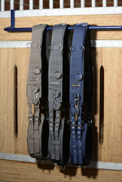 TransHorse Sport Lunging harness Memory